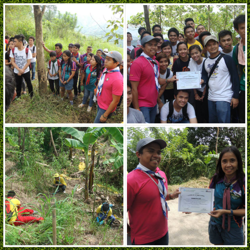 Messenger of Peace Tree Planting | World Scouting