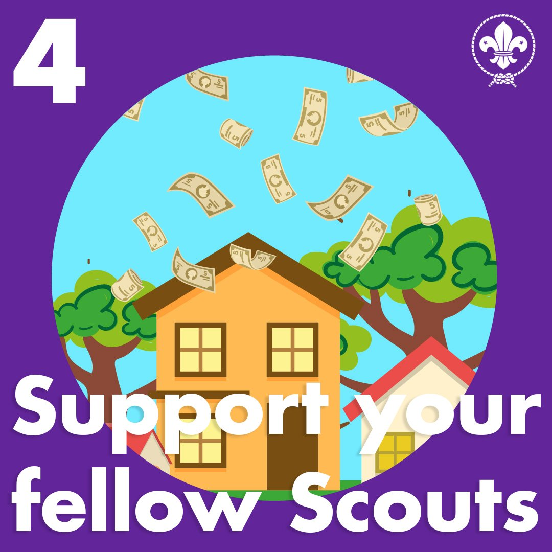 Support Scouts