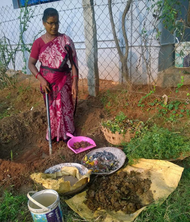 I am ready to make vermi compost for the saplings and trees