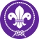 Africa Scout Region's picture