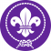 World Scouting's picture