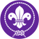 Portrait de World Scouting
